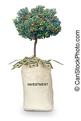 Bag with investment