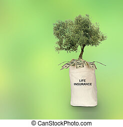 Bag with life insurance