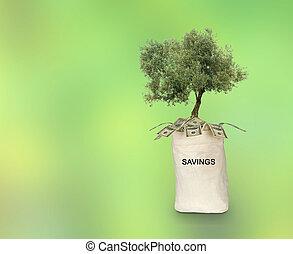 Bag with savings