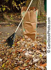 bagging, liście, upadek