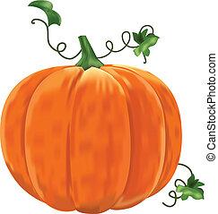 baggrund., blade, hvid, pumpkin