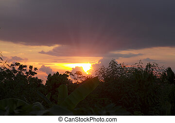 bagliore, raggi, tramonto, sole