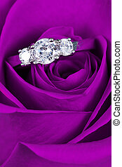 bague fiançailles, dans, rose rose