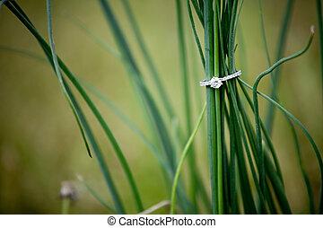 bague fiançailles, diamant, herbe