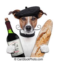 baguette, vinho, boina, francês, cão