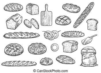 baguettes, loafs, boulangerie, chignons, vecteur, pain