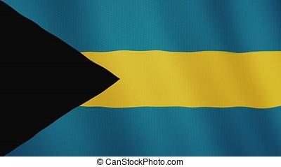 Bahamas flag waving animation. Full Screen. Symbol of the...