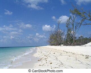 bahamas, freeport