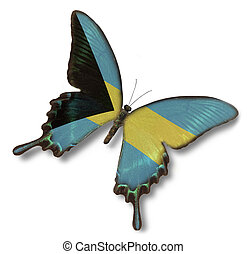 bahamas markierungsfahne, auf, papillon