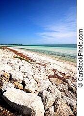 Bahia Honda Beach. Bahia Honda State Park Beach. Florida...