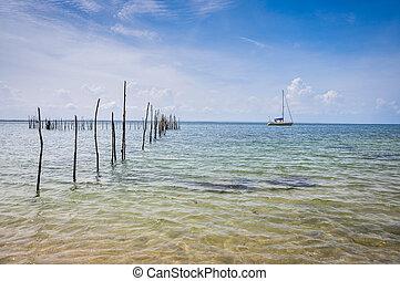 bahia, sao, 島, 航海, vacation., concept., ヨット, travel., morro, 日, paulo, sailboat., brazil., 旅行, sailing.