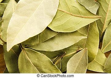 baia, mette foglie
