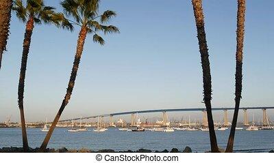 baie, port, paumes, city., pont, californie, usa., luxe, américain, coronado, comté, pacifique, célèbre, ancré, diego, mer, océan, voitures, sur, transport, automobile, infrastructure, san, yachts