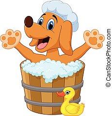 baigner, chien, dessin animé, bain