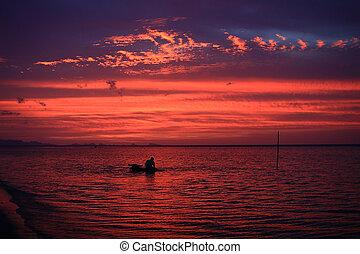 baigner, samui ile, coucher soleil, mer, buffle, homme