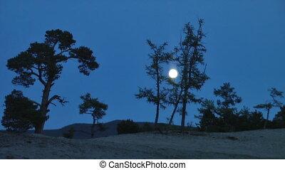 baikal., entiers, ciel, lac, lune, nuit
