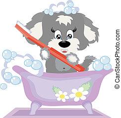 bain, chiot