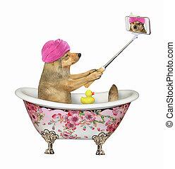 bain, marques, selfie, chien