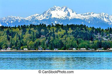 bainbridge 島, puget 音, 山, olympus, 雪, 山, オリンピック 国立公園, ワシントン州, 太平洋北西部, クローズアップ, 常緑樹