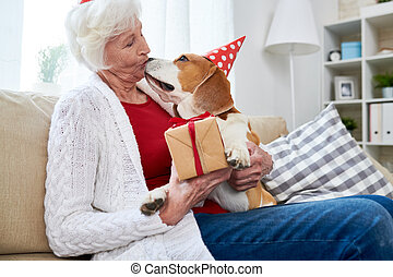 baisers, femme aînée, chien, anniversaire