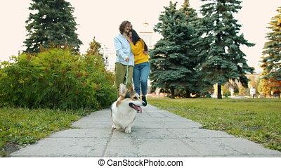 baisers, femme, ville, corgi, coup, couple, parc chien, marche, homme, chariot