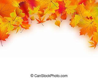 baissé, feuilles automne, fond