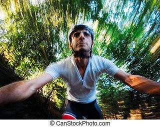 baixo, ir, floresta