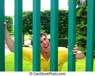 bak, a, grön, staket