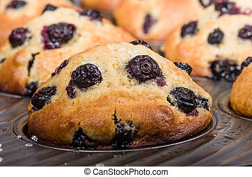 Baked berry muffins in a tray