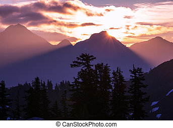 Baker Area - Mt. Baker recreation  Area,USA