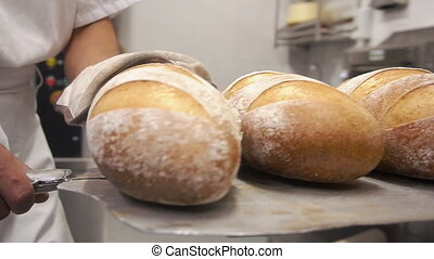Baker takes fresh baked loaves from the oven