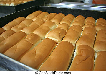 Bakery bread - Rows of buns in a tray in a bakery