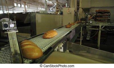 Bakery worker feeds bread on a conveyor belt.