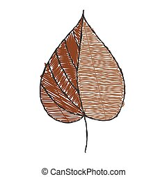 bakgrund, hand-drawn, vit, leaf., färg, isolerat, klotter, ...