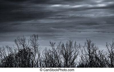 bakgrund., hopplös, halloween, natur, död, bakgrund, träd., gråvädersdag, despair., struktur, silhuett, sky, ensam, svart, grenverk, död, filial, träd, trist, konst