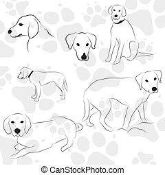 bakgrund, med, hund, nypor