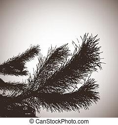bakgrund, pine., abstrakt