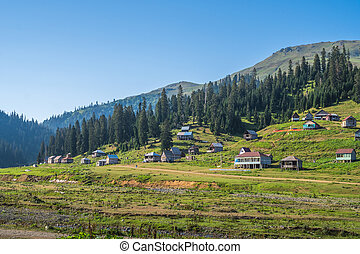 Bakhmaro village, one of the most beautiful mountain resorts of Georgia