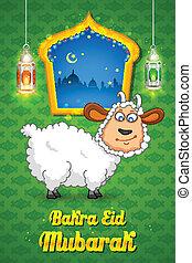 bakra, identificación, mubarak