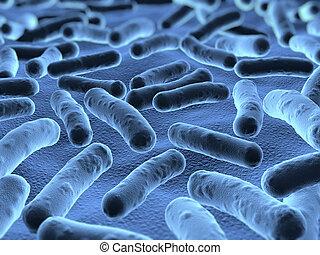 bakterien, unter, gesehen, abtastung, mikroskop