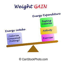 Balance between Energy intake and Energy expenditure