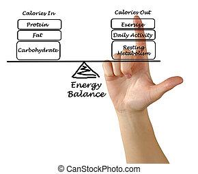 Balance between Energy intake and Energy expenditure