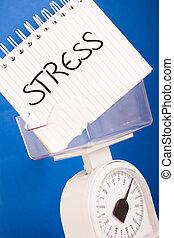 balance measuring stress load