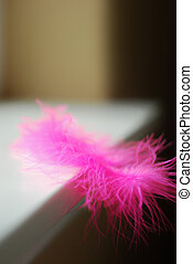 Balanced Pink Feather