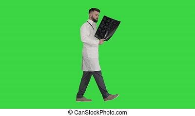 balayage, est, écran, chroma, marche, key., docteur, vert, regarder, ct, milieu
