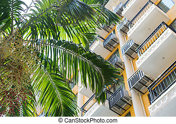 balcony of apartment building with Coconut palm trees in the city