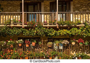 Balcony with many flower pots