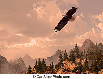 Bald eagle soaring in the Rocky Mountain high country. Original illustrative composition, created by me using Vue 3D software.