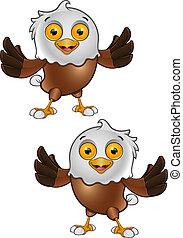Bald Eagle Character - 1