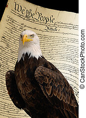 Bald eagle, constitution background - Bald eagle with...